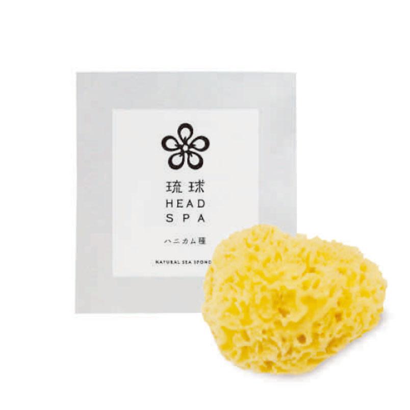 天然海綿スポンジ(ハニコム種) 琉球HEAD SPA